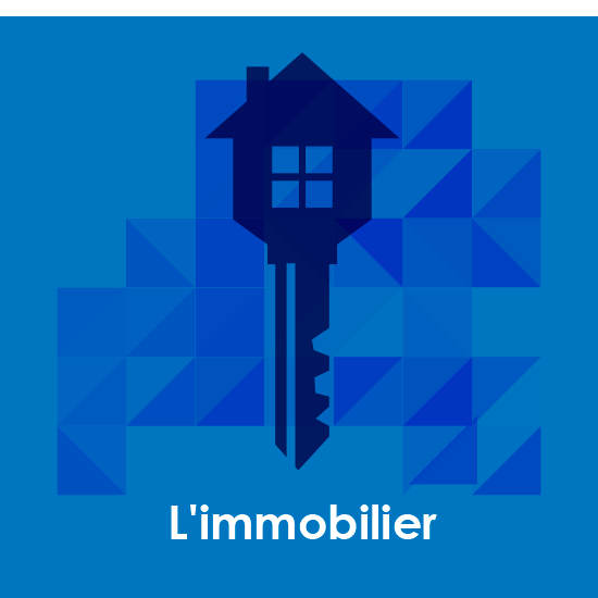 L´immobilier